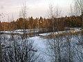 Lyovintsy, Kirovskaya oblast', Russia, 612079 - panoramio (1).jpg