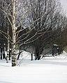Lyovintsy, Kirovskaya oblast', Russia, 612079 - panoramio (64).jpg