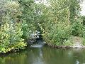 Mündung Grützmachergraben (3).JPG