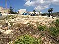 Mġarr cart ruts 02.jpg