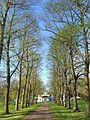 MB-Monza-parco-sentiero-010a.jpg