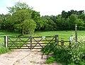 Maer Hills - geograph.org.uk - 447871.jpg