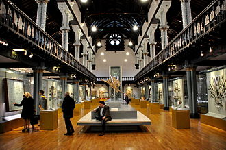 Hunterian Museum and Art Gallery - Main Hall, the Hunterian Museum, Glasgow.