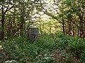 Mali Javornik (1219 m) - panoramio.jpg