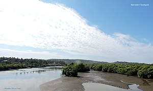 Mandovi River - Mandovi River view on cloudy day in winter, Goa, India
