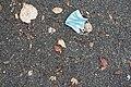 Masque barrière et feuilles sur un trottoir.jpg