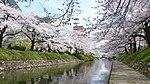 Matsukawa-koen Sakura.JPG