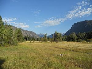 Mazama, Washington - A small meadow near the cabins in Mazama