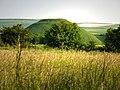 Meadow near the car park Avebury, Silbury Hill in the distance - geograph.org.uk - 841998.jpg