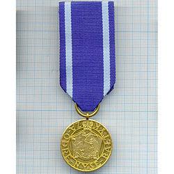 Medal Za Odrę, Nysę i Bałtyk.jpg