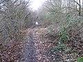 Medlock Vale path - geograph.org.uk - 1141541.jpg