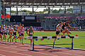 Men 3000 m steeple French Athletics Championships 2013 t172125.jpg