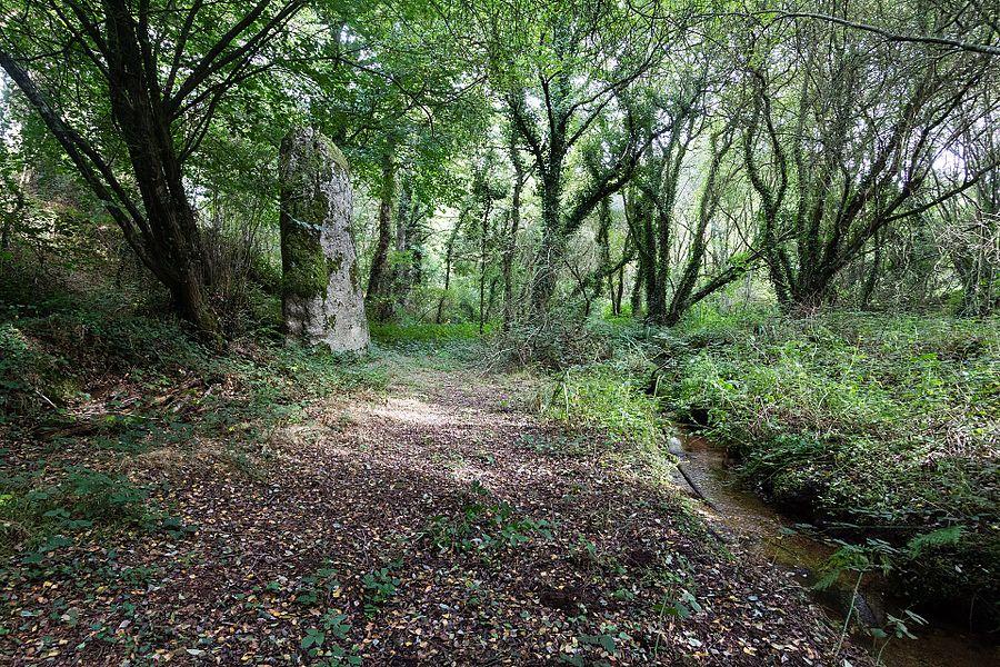 Français:  Menhir dit «le Fuseau» à Plaine-Haute (France).