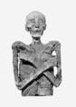 Merneptah mummy.png