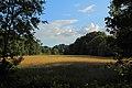 Mettingen Naturschutzgebiet Rote Brook 02.JPG