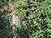 foto van Peel-Raamstelling: kazemat 527