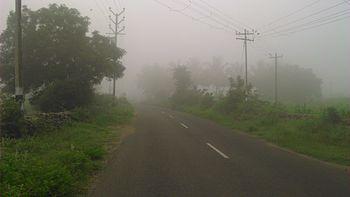Mist in our village.jpg