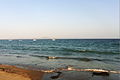 Miura beach (4432240656).jpg