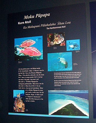 S. Hata Building - An exhibit at the discovery center