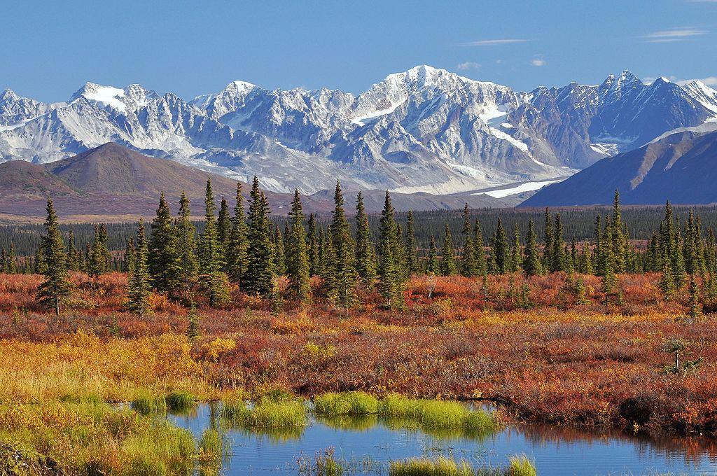 Princess Alaska Land Tours