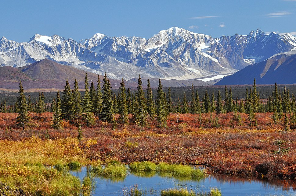 Monahan Flat and the eastern Alaska Range mountains