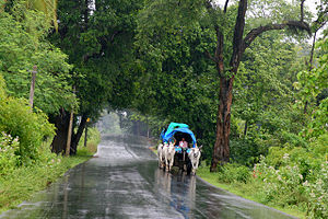 English: Monsoon in south india