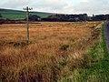 Moorland in the Glenkens - geograph.org.uk - 267173.jpg
