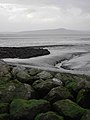 Morecambe Bay.JPG