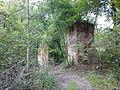Morysin - zespół pałacowo-parkowy - domek stróża - ruiny - widok wschodni - 2.jpg