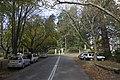 Mount Wilson NSW 2786, Australia - panoramio (38).jpg