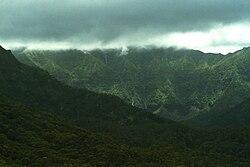 Mt. Waialeale.jpg