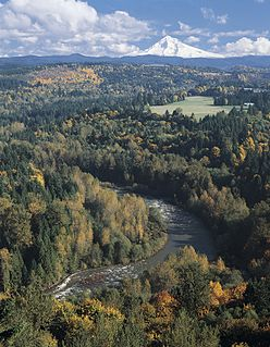 Sandy River (Oregon) tributary of the Columbia River in northwestern Oregon in the United States