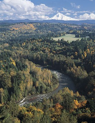 Sandy River (Oregon) - Sandy River and Mount Hood