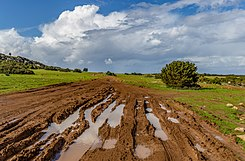 Muddy road in Akamas Peninsula, Cyprus 02.jpg