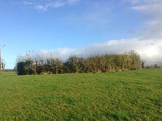 Plague of Mohill - Mullaun (c. 16m) Ringfort, Drumsna, County Leitrim
