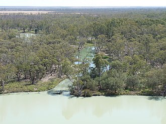 Hynerpeton - The modern day Murray River of Australia, a similar environment to the Catskill Formation during the Devonian