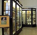 Museo antropologico, sezione africa, congo e alto nilo.JPG