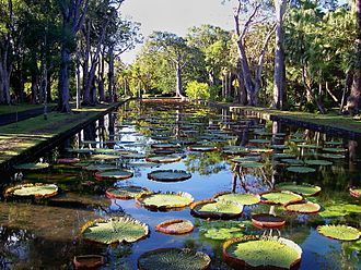 Pamplemousses District - Pamplemousses Botanical Garden