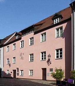 Wespennest in Nürnberg