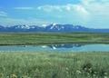 NRCSMT01007 - Montana (4865)(NRCS Photo Gallery).tif