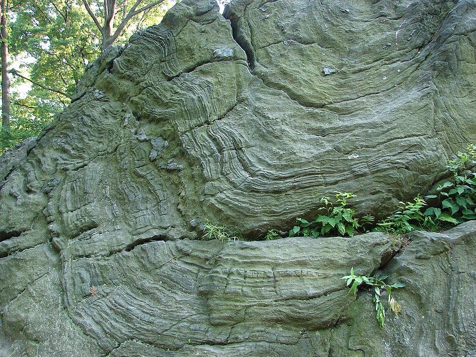 NY-Central-Park-Rock-7333