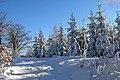 Na turystycznym szlaku - panoramio - grzegorzsenkowski (1).jpg