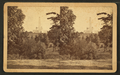 National Lincoln Monument, Springfield, Illinois. View from a point slightly east of north from the Monument, and across a ravine running east and west through Oak Ridge Cemetery, from Robert N. Dennis collection of stereoscopic views 3.png