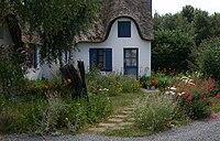Natural-garden.JPG
