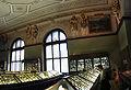 Naturhistorisches Museum Wien.jpg