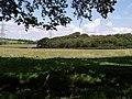 Near Brendonmoor Plantation - geograph.org.uk - 498526.jpg