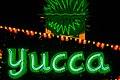 Neon Boneyard (40913512692).jpg