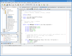 NetBeans IDE 6.0 on Linux.png