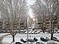 Neve a Roma.jpg