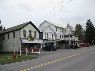 New Milford, Pennsylvania Borough in Pennsylvania, United States